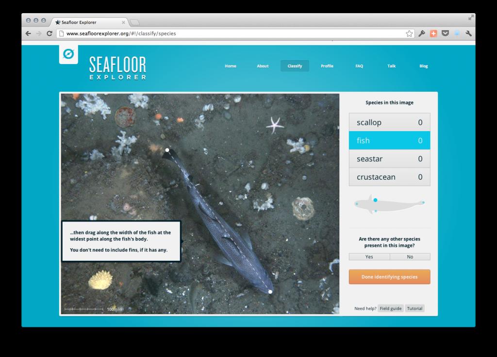 SeaFloor Explorer